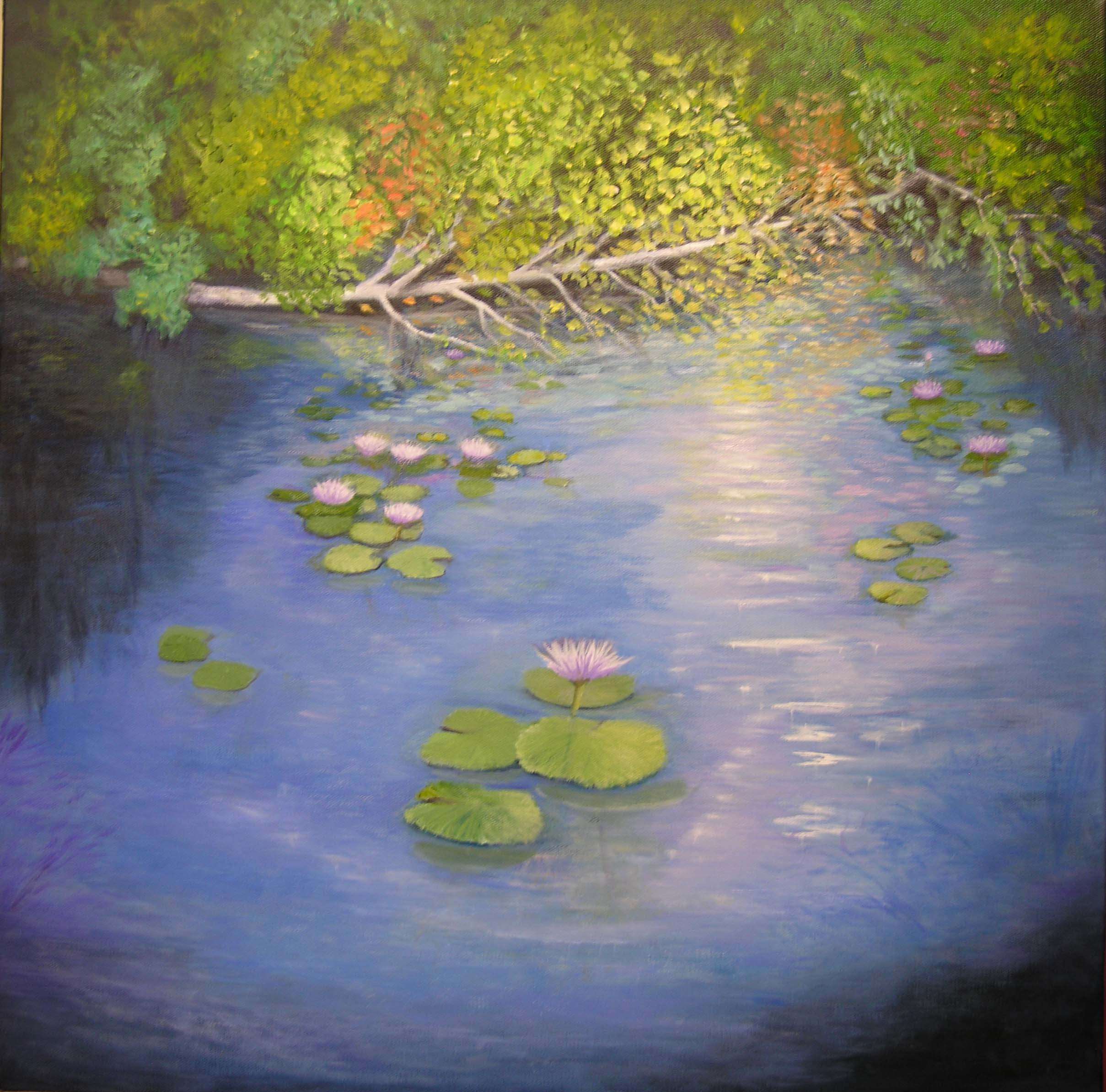 Spot Lights On Lily Pad Pond- SOLD