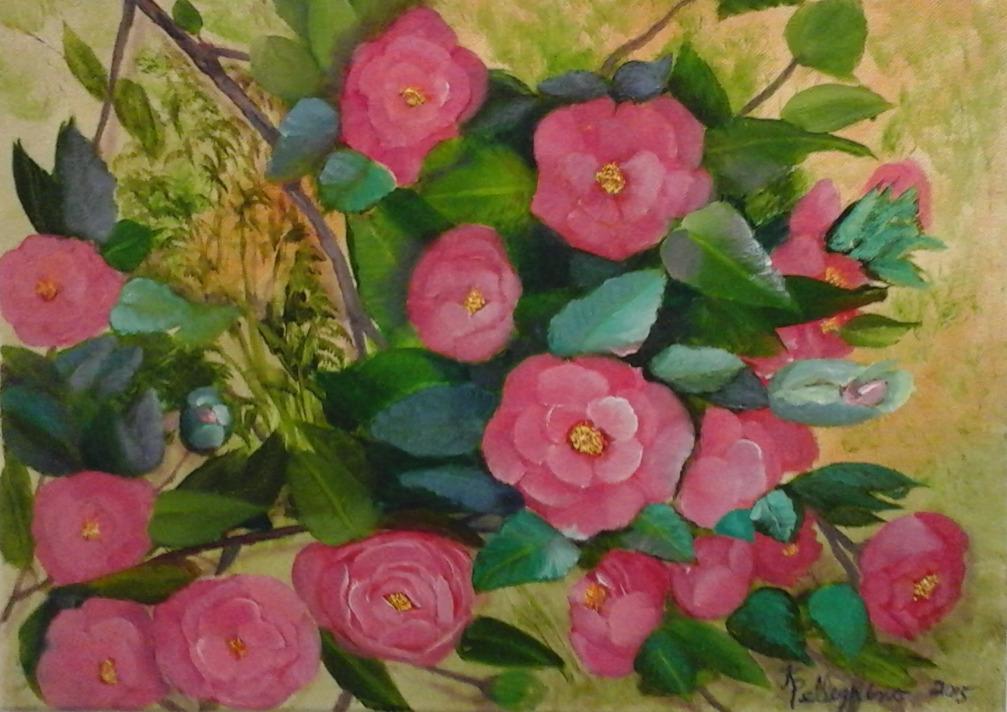 Camellia Show Offs