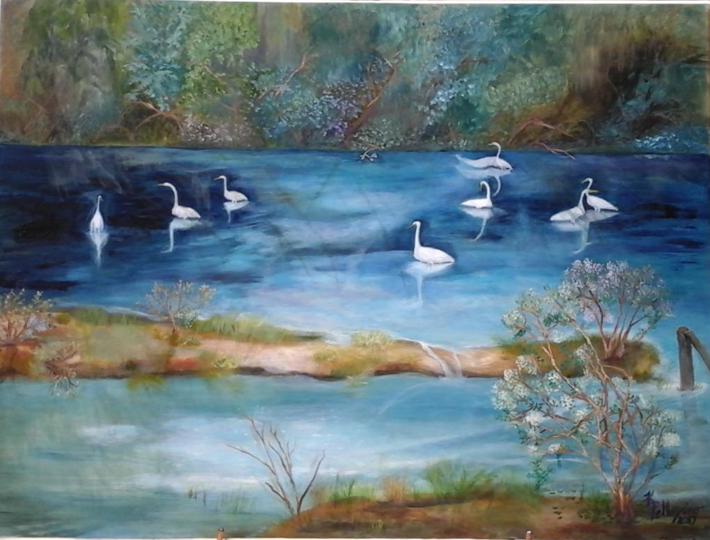 Too Many Egrets