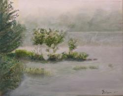 Misty Morning -