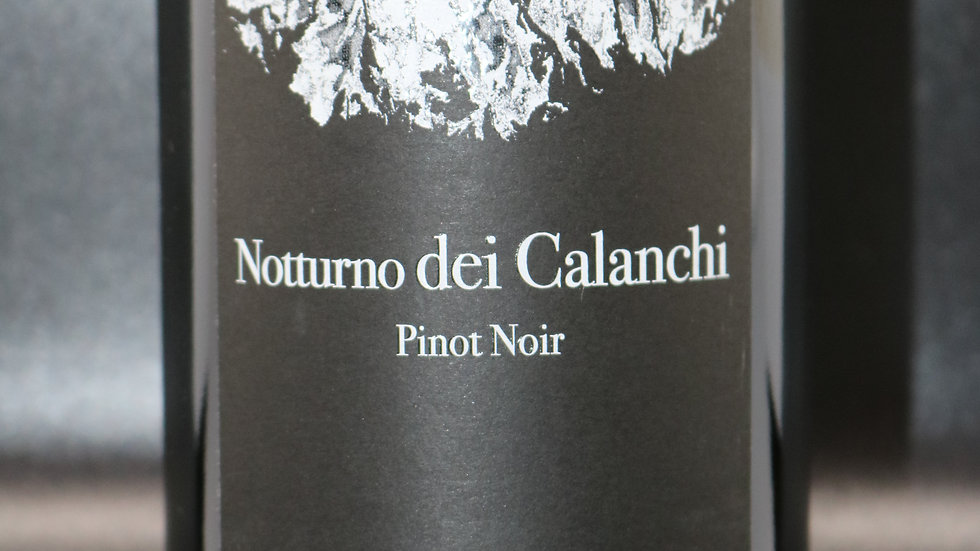 Paolo e Noemia d'Amico, Notturno dei Calanchi Pinot Noir, Umbria Italy, 2013
