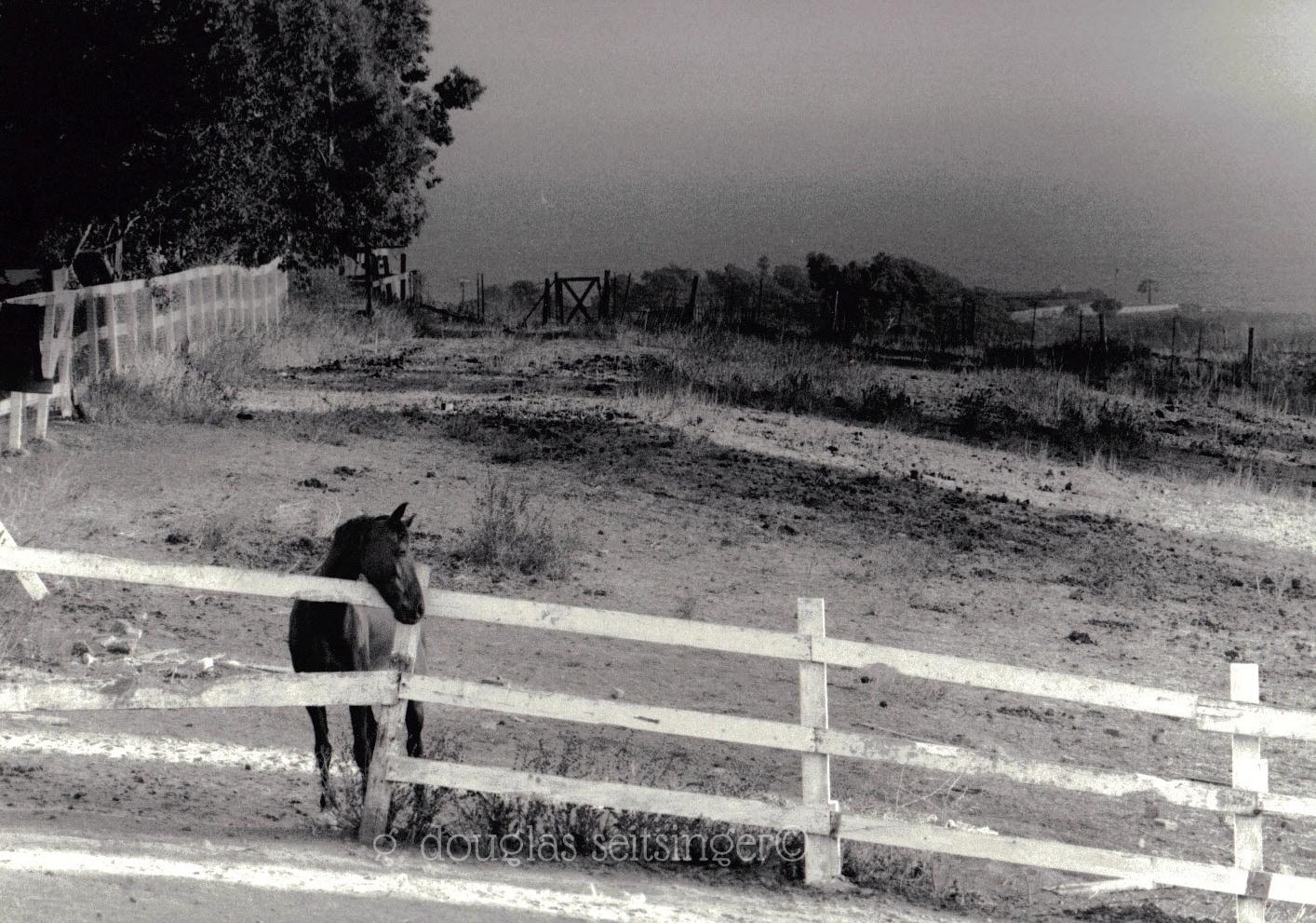 Rural 20