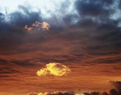 Skies 22
