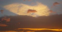 Skies 19