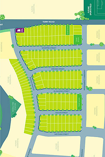development site plan