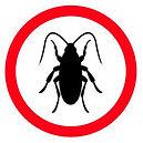 Cockroach-guide.jpg