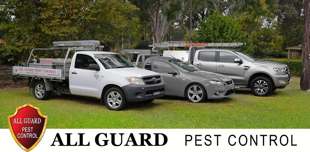 All Guard Pest Control Team