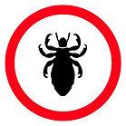 Sydney exterminator