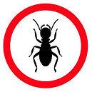 termites-guide.jpg