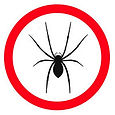 Spider-guide.jpg