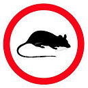 Rodent-guide.jpg