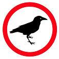 Bird-guide.jpg