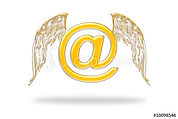 Angel wings email.jpg