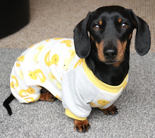 Ugly Duckling Dog PJ's
