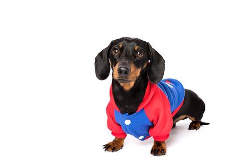 SuperPup Dog Hoodie