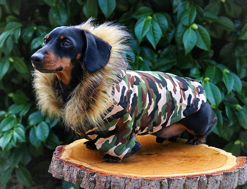 Camo Parka Dog Coat