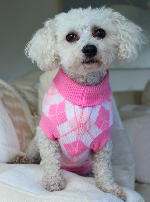 Pink Going Golfing Dog Jumper