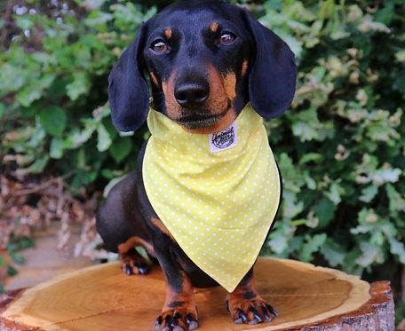 Yellow Polka Dog Bandana