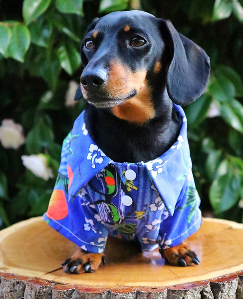 Beach Party Hawaiian Dog Shirt