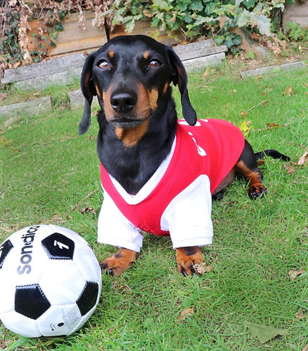 Red & White Dog Football Shirt