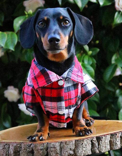 Lumberjack Dog Checked Shirt