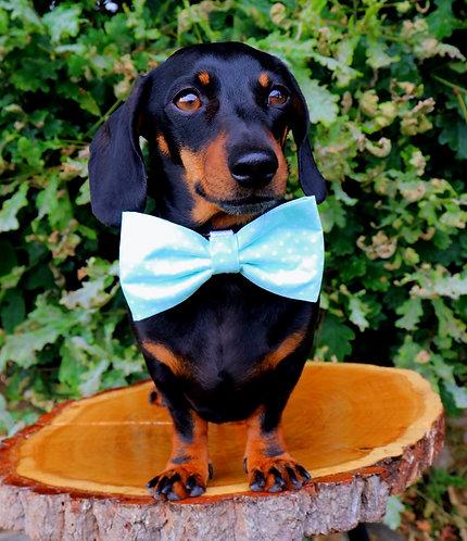 Mint Polka Dog Bow Tie