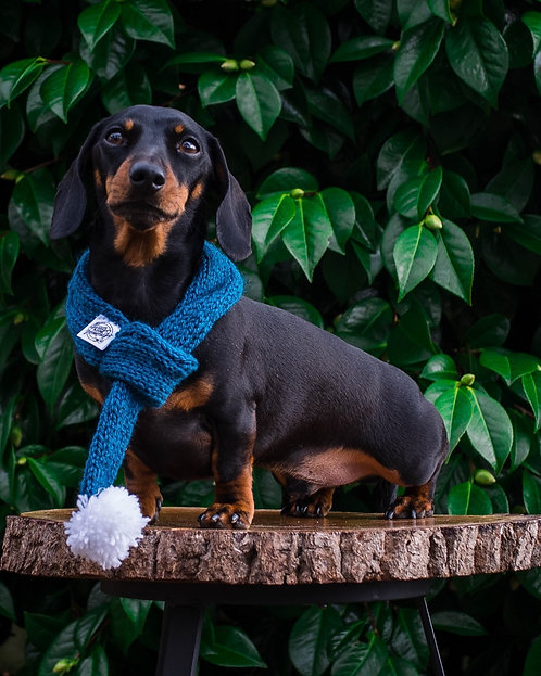 Nanny Knitted Dog Scarf
