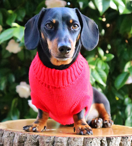 Nanny Knitted Dog Jumper