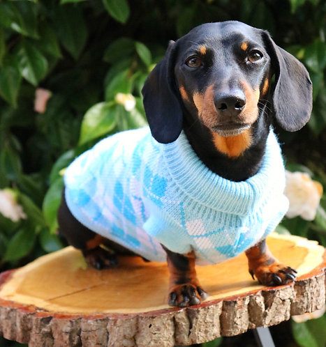 Blue Going Golfing Dog Jumper
