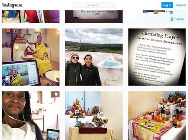 Instagram feed screenshot x800.png