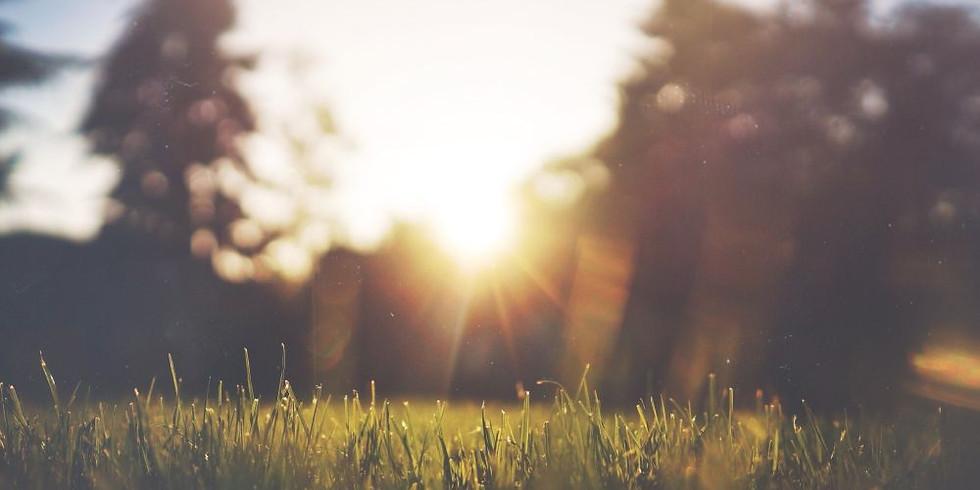 9/16 - Thursday Morning Guided Meditation