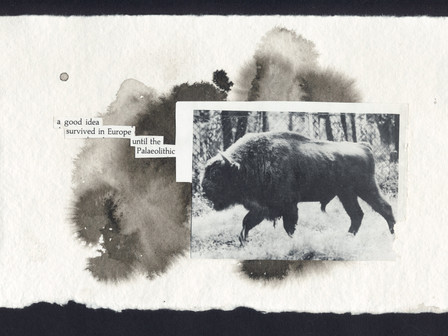 Erasure, Collage, Decolage, Poetry