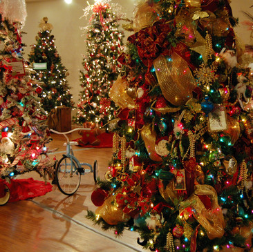 Christmas 1 (3).JPG