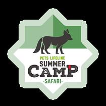 SummerCamp_Safari.png