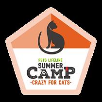 SummerCamp_Crazy4Cats.png