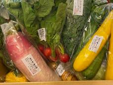 【無農薬】てらす家の野菜【美味しい】