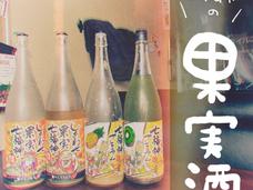 【 美味しすぎる果実酒 🍐🍎🍊🍑🥝🍍 】