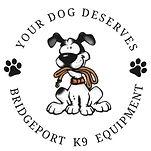 your dog deserves.jpeg