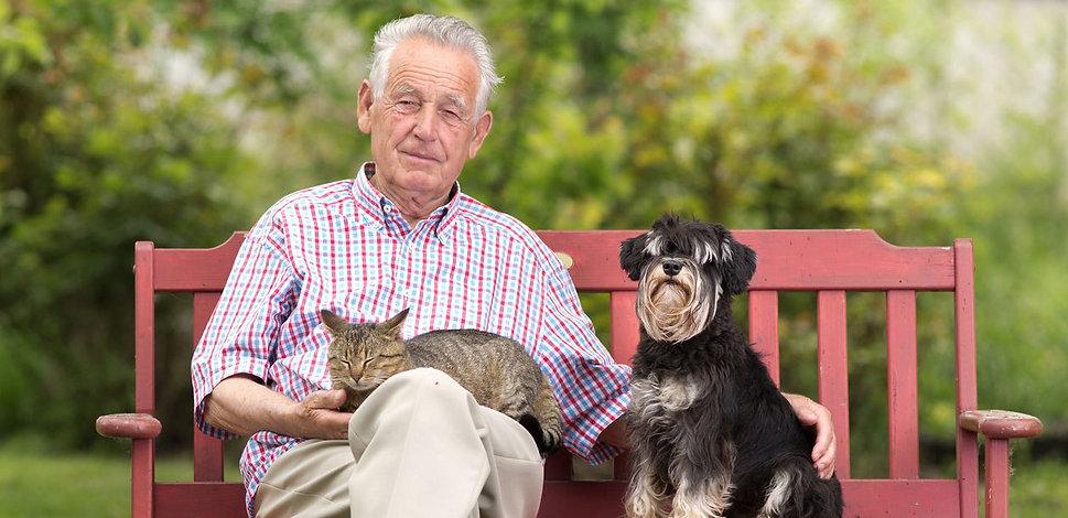 Psychology-Man-Dog-Cat-27980490_ml-21_ed