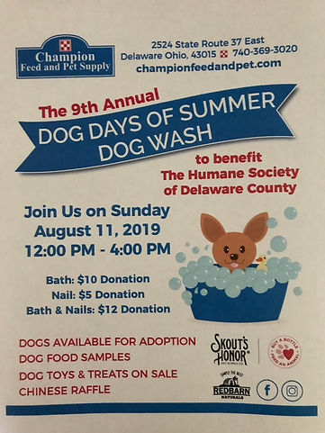 champion feed dog wash Aug 2019.jpg