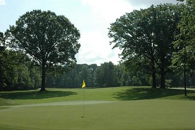 golf rattlesnake 5.png