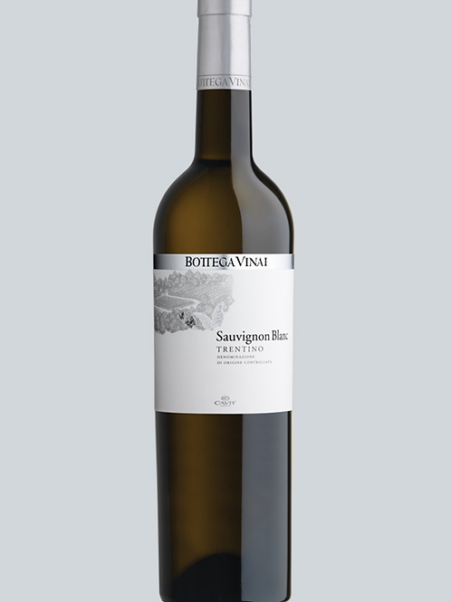 Cavit - Sauvignon Blanc Bottega Vinai