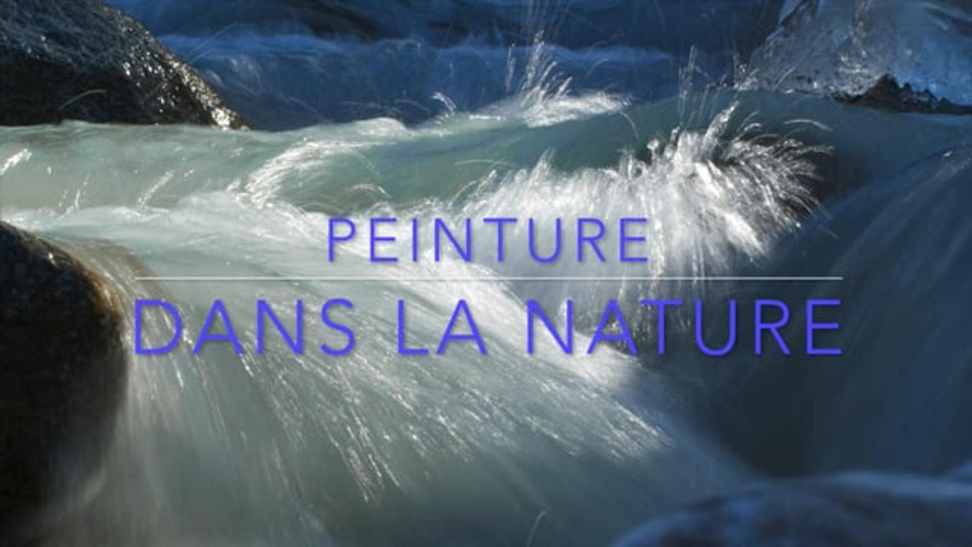 Vidéo des ateliers Peinture dans la Nature de l'été 2017
