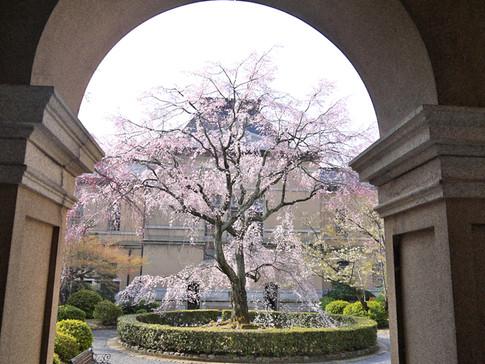 京都府庁 旧本館
