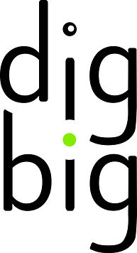 DigBig Business and Innovation Consultants Logo