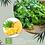 Thumbnail: CHandelle kodo Ananas et Coriandre