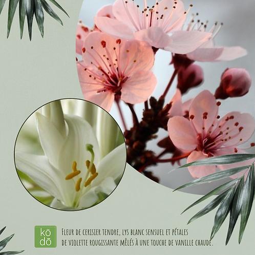 Chandelle kodo Fleurs de cerisier Japonais