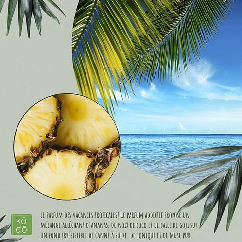 Chandelle kodo Eau de coco & ananas