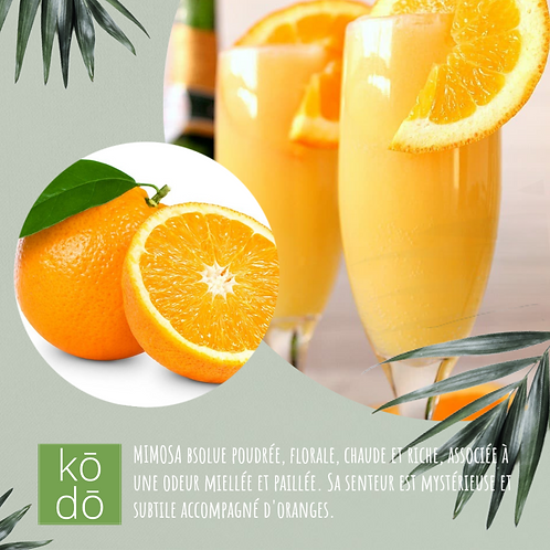 Chandelle kodo Mimosa & Orange