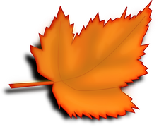 maple-150742_640.png
